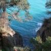 Liguria E Il  Golfo Del Tigullio - Febbraio 2018  foto 4