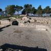Alberobello, Matera E Qualcos'altro   foto 1