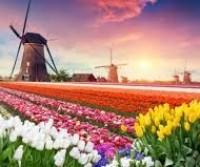Germania, Olanda con dessert di Dolomiti 2019