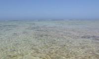Isola d'Elba in tour