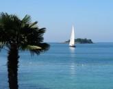 Istria In Ottobre  foto 1