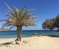 Creta on the road