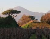 Capodanno 2020 Tra Toscana E Campania  foto 1