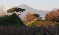 Capodanno 2020 tra Toscana e Campania