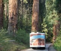 Viaggio in U.S.A. e Parchi Nazionali del Sud-Ovest