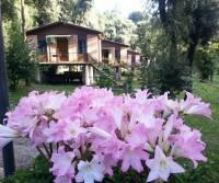 Villaggio Camping Sant'Elia