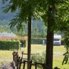 Area Camper Podere Campofossato