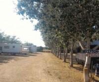 Campsite International