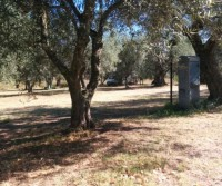 Agricampeggio Monterotondo