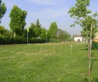 Agricamping Corte Finiletto