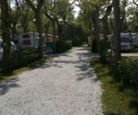 Camping Viareggio