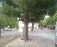 Savinan Park