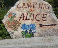 Campeggio Alice