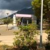 Camp Lavander
