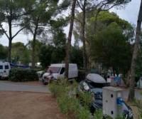 Selection Camping