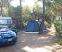 International Camping Village Etruria