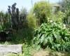 Agricampeggio Erbavoglio  27/04/18 08:30