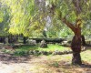Agriturismo Monticchio Resort  05/06/18 17:41