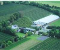 Apple Farm Cahir