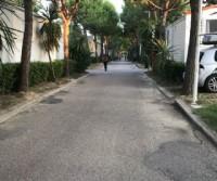 Riva Nuova