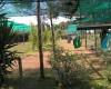 Agriturismo Campeggio F.lli Mizzon  Area per tende 02/09/18 23:16