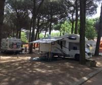 International Camping Mare e Pineta