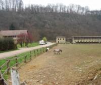 Azienda agricola Cascina della Volpe