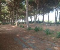 Camping Village Riva dei Tarquini