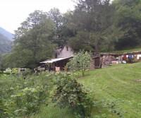 Azienda agricola Antonioli