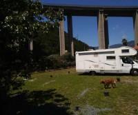Aloha area camper