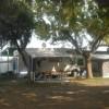 Camping Delfino