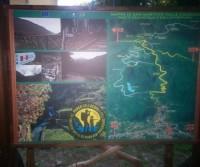 Mafariello Area Picnic