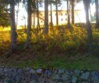 Santuario minore Del Mazzucco