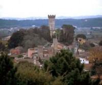 Area Comunale Vicopisano