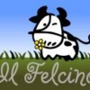 Felcino