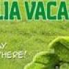 News di Italia Vacanze